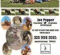 Joe Pepper '73